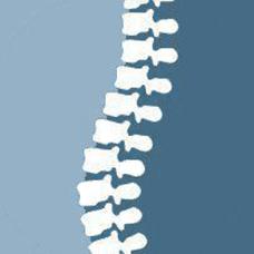 everybodys chiropractic logo